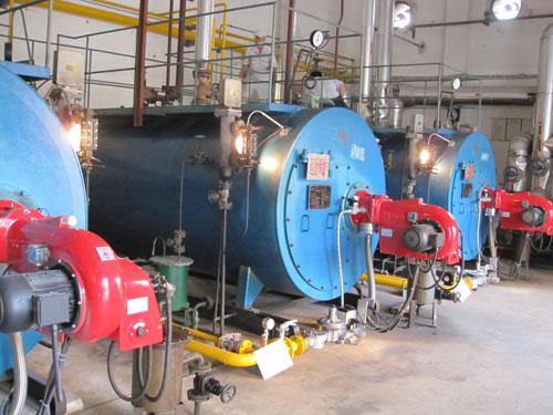 蓝天燃油锅炉内部结构图片
